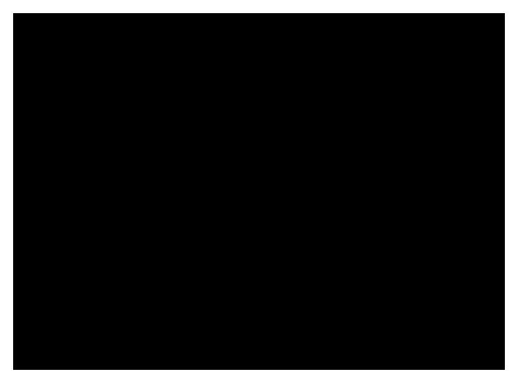 Concept Bespoke Logo